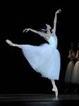 大剧院舞蹈节:美国旧金山芭蕾舞团《吉赛尔》的图片