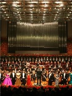 中央歌剧院歌剧音乐会《丑角》的图片