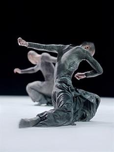 大剧院舞蹈节:陶身体剧场《数位系列》的图片