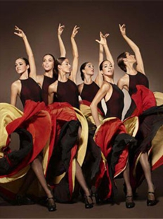 西班牙国家芭蕾舞团 弗拉明戈舞蹈《回廊》《呼吸》的图片