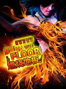 风靡全球的舞蹈巨作《燃烧地板》铂金纪念版的图片