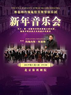 维也纳约翰施特劳斯管弦乐团2019北京新年音乐会的图片