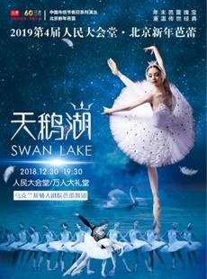 2019第4届北京新年芭蕾—乌克兰基辅大剧院芭蕾舞团《天鹅湖》的图片