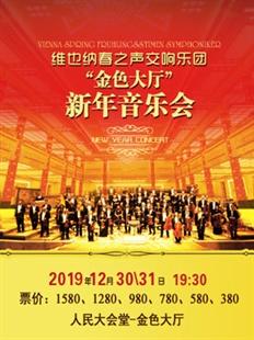 维也纳春之声交响乐团新年音乐会的图片