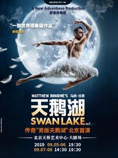 天桥•新经典艺术节马修•伯恩舞剧《天鹅湖》的图片